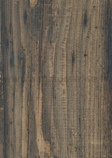 Mangrove drevo 0469 WL