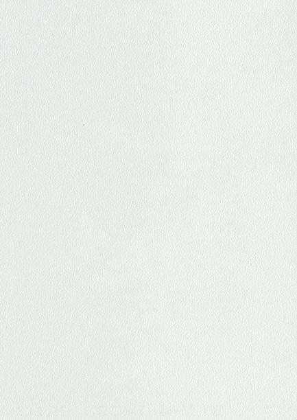 D129 PS 10 Biela hladká